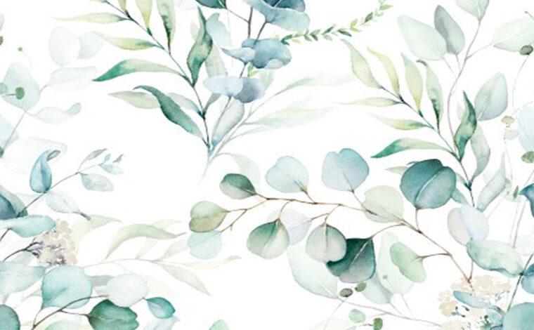 Duży wybór wzorów botanicznych i kwiatowych